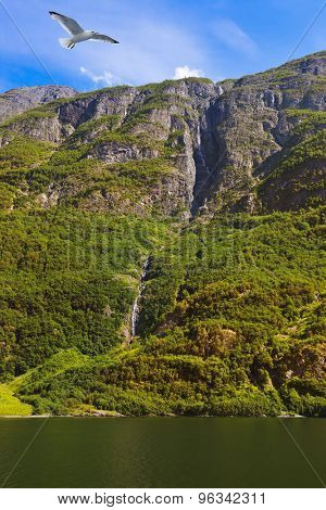 Waterfall in fjord Sognefjord - Norway - nature and travel background