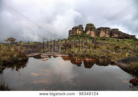 Stunning Rocky Terrain Of Roraima Mount With Natural Pond And Local Flora Covered With Clouds