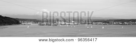 Sailboat Regatta Commencement Bay Puget Sound Port Tacoma Mt. Rainier
