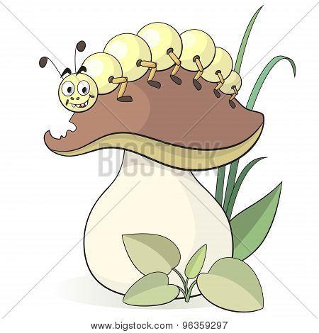Caterpillar And Mushroom