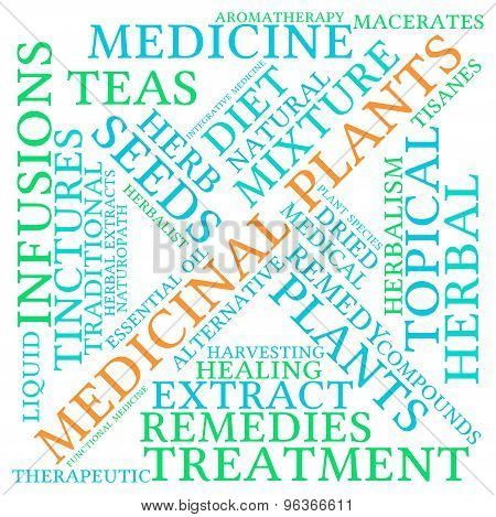 Medicinal Plants Word Cloud