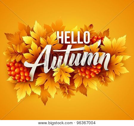 Autumn typographic. Fall leaf. Vector illustration