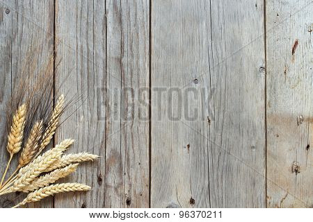 Wheat And Spelt On Wooden Background
