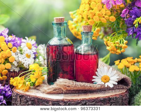 Bottles Of Tincture Or Cosmetic Product And Healing Herbs. Herbal Medicine.