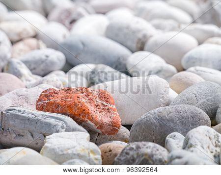 Orange Stone Among Other Stones