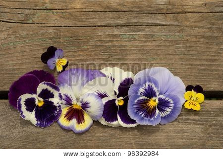 Blue Colored Pansy Flowers On A Wooden Background, Symbol Of Fun And Reminiscence. Copy Space For Th