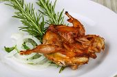 stock photo of quail  - Grilled quail with rosemary on the wood background - JPG