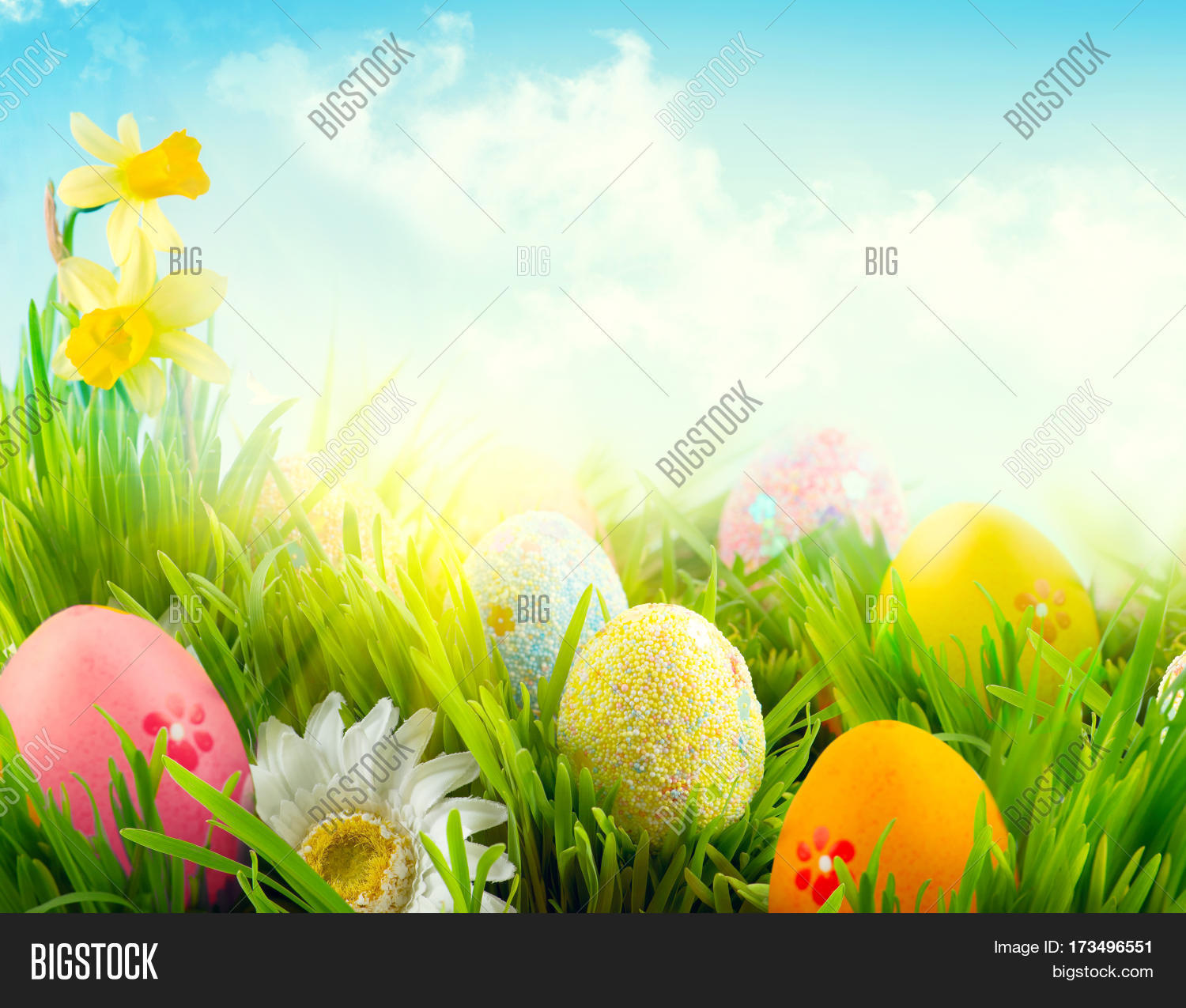 Easter Nature Spring Scene Background Beautiful Colorful Eggs In Grass Meadow Over Blue Sky