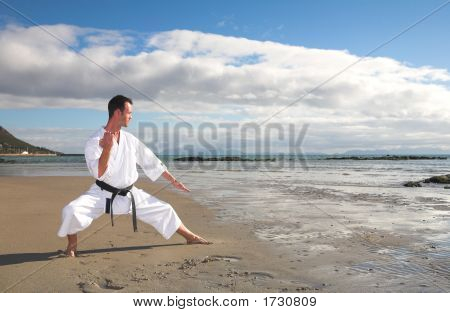 Man Practicing Karate On The Beach