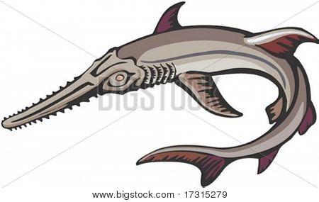 Marine Character