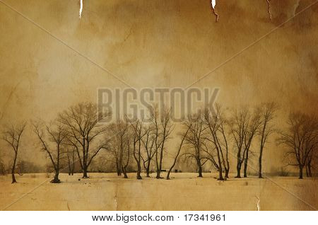 grunge paper texture with trees(special f/x)
