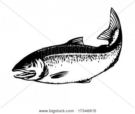 Salmon - Retro Clipart Illustration