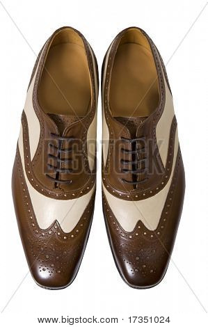 Stylish man's brown shoes