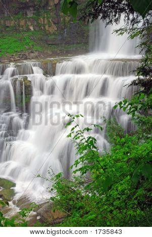 Secret Forest Waterfall