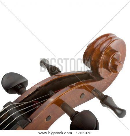 Cello Close Up