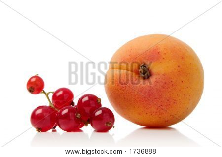 Redcurrant And Apricot
