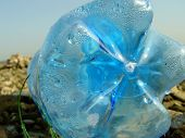 picture of non-biodegradable  - Blue PET bottle near river line - JPG