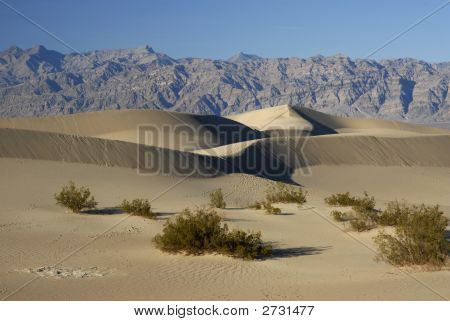 The Dunes Of Death Valley, Ca