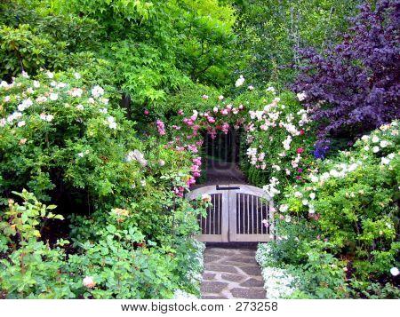 Ein Garten-Tor