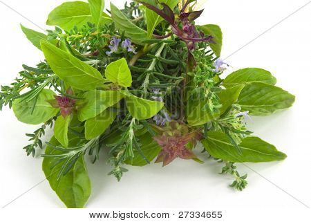 Aromatic herbs on white background