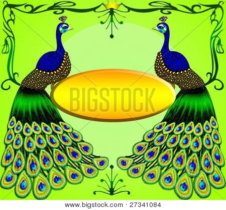 Two Peacocks With Message