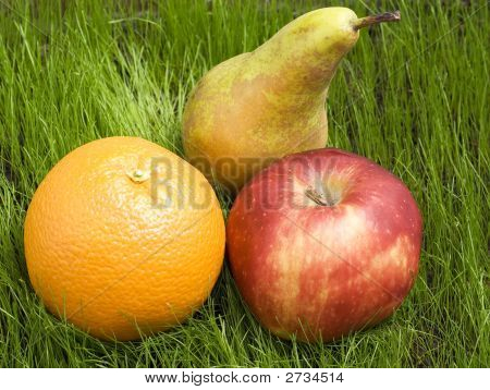 Fruits On Grass