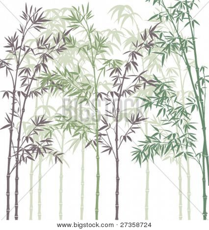 vector background with bamboo forest