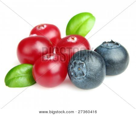 Cranberry with blueberry. Use it for a health and nutrition concept.