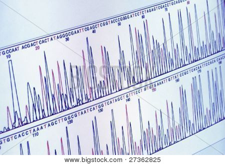 science graph on computer screen