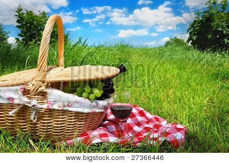Outdoor picnic setting with wine