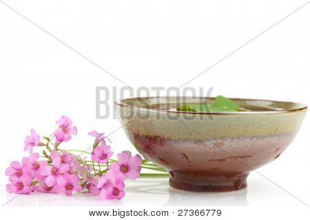 ceramic bowl and pink flowers on white background
