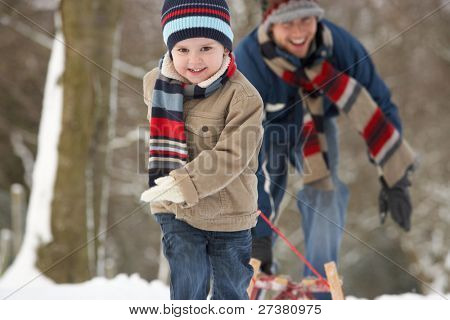 Children Pulling Sledge Through Winter Landscape