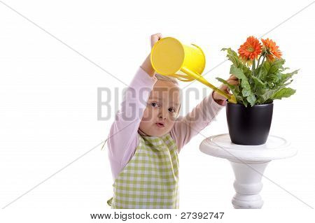 Gardening Little Girl Watering The Flowers