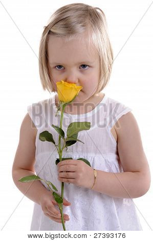Little Girl In White Smelling Yellow Rose