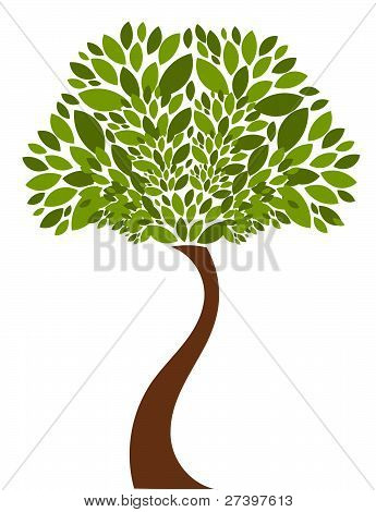 Tree Illustration
