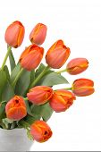 foto of flower vase  - A bouquet of elegant tulips in a beautiful pitcher vase - JPG
