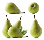 Ripe Pears With Leaves Isolated On A White Background. Three Pears With Copy Space For Text. Green P poster