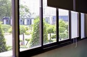 Green View Beside Window In Office, Flare Light Through The Window In The Morning, Relaxing Time, Qu poster