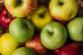 Close Up View Of Ripe Multicolored Apples In Wicker Basket poster