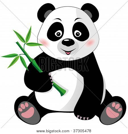 Sitzend Cute Panda mit Bambus, Isolated On White