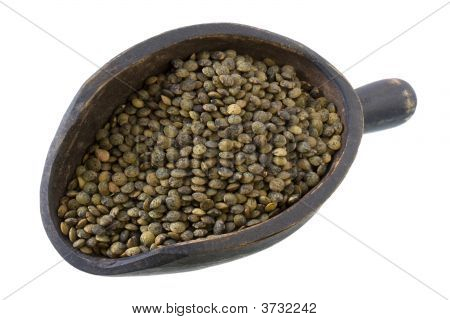 Scoop Of French Green Lentils