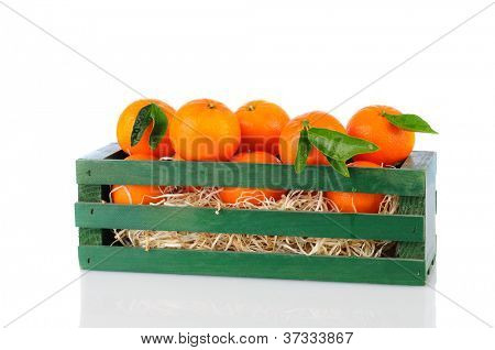 A wood crate full of Clementine Mandarin Oranges. Horizontal format over a white background with reflection.
