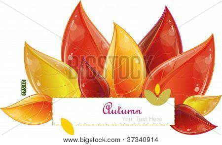 Autumnal Leaves Design