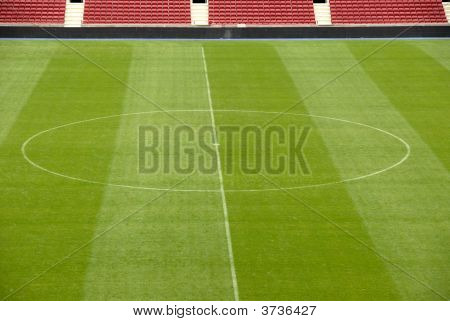Lawn In A Soccer Stadium