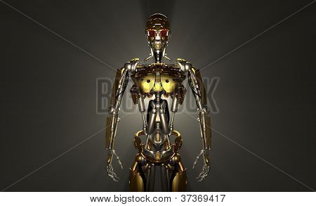 Advanced robot