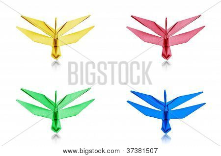 Paper Dragonfly Collection.