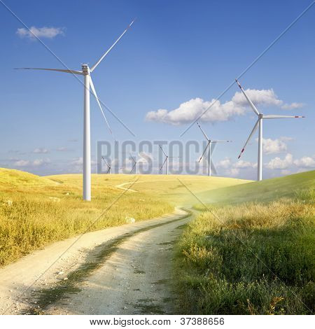 Windmills on the field and the road