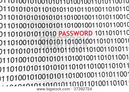 www Password