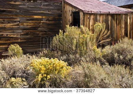 Iconic Old West Home