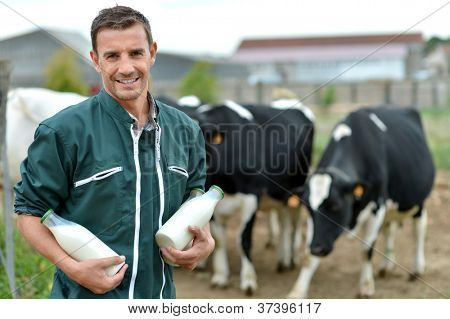 Farmer standing in front of cow herd with bottles of milk